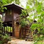 โฮมสเตย์บ้านต้นไม้ ตกแต่งเรียบง่าย กลิ่นอายดั้งเดิม โอบล้อมไปด้วยธรรมชาติสีเขียว