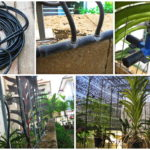 ร้อนแค่ไหนไม่มีหวั่น!! ทำระบบพ่นน้ำต้นไม้แบบหมอกด้วยตัวเอง สร้างความเย็นสดชื่นทั่วพื้นที่สวน