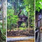บ้านกระท่อมท้ายสวน ยกพื้นใต้ถุนสูง กลางป่าด้วยธรรมชาติสีเขียว เงียบสงบ เพื่อการพักผ่อนอย่างแท้จริง