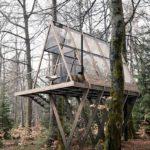 บ้านผนังกระจกกลางป่า โครงสร้างไม้ โชว์ฟังก์ชันภายในแบบทะลุปรุโปร่ง