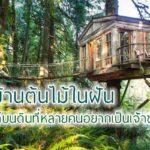 """11 """"บ้านต้นไม้"""" ฝากชีวิตไว้กับธรรมชาติ สวรรค์บนดินที่หลายคนอยากเป็นเจ้าของ"""