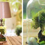 """สวนจิ๋วในโคมไฟ """"Terrarium Lamp"""" ธรรมชาติที่ถูกย่อส่วน กับสวนสวยในเทพนิยาย"""