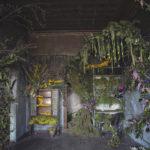 หญิงสาวชาวอเมริกันลงทุนใช้ดอกไม้กว่า 4,000 ดอก เพื่อตกแต่ง 'บ้านร้าง' กลายเป็นภาพที่งดงามปนความหลอน!!