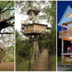 """50 ไอเดีย """"บ้านต้นไม้"""" พร้อมเคล็ดลับดีๆ ในการออกแบบ เปลี่ยนบ้านในฝันให้กลายเป็นความจริงกันเถอะ!"""