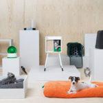 IKEA ปล่อยคอลเลคชั่น 'เฟอร์นิเจอร์สำหรับสัตว์เลี้ยง' ที่เพ็ทเลิฟเวอร์เห็นแล้วจะต้องอยากได้!