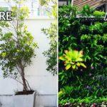 เปลี่ยนผนังรั้วบ้านแสนธรรมดา ให้กลายเป็น 'สวนแนวตั้งแสนสวย' ด้วยงบไม่เกิน 10,000 บาท