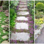 """แนะนำ 15 """"พรรณไม้คลุมดิน"""" สำหรับตกแต่งพื้นที่ทางเดินในสวน ให้สวยงาม มีชีวิตชีวา"""