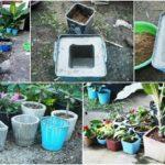 DIY 'กระถางปูนเปลือย' สำหรับตกแต่งสวน สร้างความสวยงามให้มุมโปรดของคุณ