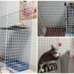 """แชร์ไอเดีย """"DIY กรงแมว"""" สร้างพื้นที่พักผ่อนและปลอดภัยให้กับเจ้าขนปุย"""
