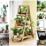 """35 ไอเดีย """"สวนขนาดเล็ก"""" สไตล์มินิมอล ออกแบบเพื่อบ้านหรือห้องพื้นที่จำกัด"""