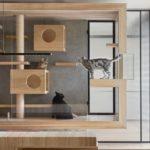 """เอาใจทาสแมวด้วยไอเดีย """"กรงแมวบิวท์อินในห้องนั่งเล่น"""" ที่สร้างขึ้นจากห้องกระจกและไม้"""
