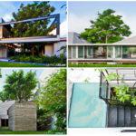 """9 ไอเดีย """"ออกแบบสวนในบ้าน"""" สร้างความสดชื่นและพื้นที่สีเขียว ให้แนบชิดกับธรรมชาติยิ่งขึ้น"""