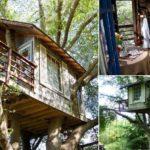 """พาไปชม """"บ้านต้นไม้"""" ฝากโครงสร้างไว้กับลำต้น ชมธรรมชาติได้ทั้งวันแบบไม่มีเบื่อ"""