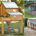 """32 ไอเดีย """"เล้าไก่"""" จัดสรรฟาร์มเล็กๆ สำหรับคนอยากเลี้ยงไก่ในพื้นที่รอบบ้าน"""