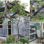 บ้านเล็กในป่าใหญ่อันแสนอบอุ่น ตกแต่งสไตล์โมเดิร์นขนาดกะทัดรัด ล้อมรอบด้วยธรรมชาติ