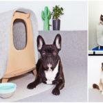 ไอเดียบ้านสัตว์เลี้ยงขนาดเล็ก ออกแบบถอดประกอบได้อย่างสะดวก จัดเก็บก็ทำได้ง่าย