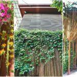 """27 ไอเดีย """"ม่านบาหลี"""" เหมาะสำหรับตกแต่งสวน ทางเดิน เฉลียง เติมความสดชื่นให้พื้นที่นอกบ้าน"""