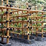"""ชวนชม """"สวนไม้ไผ่"""" จัดสวนแนวตั้งแบบประหยัดพื้นที่ ไอเดียเพื่อการจัดสวนในเมือง"""