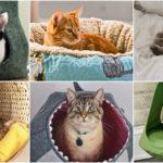 """25 ไอเดีย """"ที่นอนแมว"""" หลายแบบหลากสไตล์ ทั้งอบอุ่นและสบาย ได้ใจทาสแมวไปเต็มๆ!"""