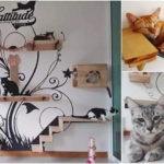 """ไอเดียออกแบบ """"บ้านแมว"""" ดีไซน์วิมานแสนสบายให้เหล่าเจ้านายขนปุย"""