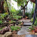 """พาไปชม """"สวนลำธาร"""" ไอเดียตกแต่งสวนในบรรยากาศรื่นรมย์เคล้าเสียงน้ำไหล"""