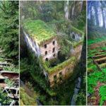 """16 ภาพ """"สถานที่รกร้างจากทั่วโลก"""" ที่ถูกธรรมชาติกลืนกินจนกลายเป็นความสวยงามที่น่าค้นหา"""