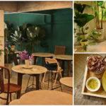 """รีโนเวทบ้านเก่าให้กลายเป็น """"ร้านกาแฟสุดน่ารัก"""" ตกแต่งสวยงามในสไตล์วินเทจ งบประมาณ 200,000 บาท"""