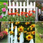 """39 ไอเดีย """"รั้วสวนหย่อม"""" เนรมิตความสวยสดให้รั้วบ้าน สร้างเสน่ห์ดึงดูดสายตา"""