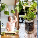 """14 ไอเดีย """"ปลูกพืชสมุนไพรในบ้าน"""" มุมเครื่องปรุงสดใหม่ เพื่อคนรักการทำอาหาร"""