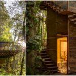 """บ้านไม้ทรงสูงกลางป่า ที่พักอาศัยจากแนวคิดการสร้างสะพานเชื่อมระหว่าง """"บ้านกับธรรมชาติ"""""""