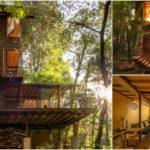 """บ้านไม้โมเดิร์นทรงสูง ที่พักอาศัยจากแนวคิดการสร้างสะพานเชื่อมระหว่าง """"บ้านกับธรรมชาติ"""""""