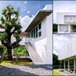 House DN บ้านแห่งศิลปะของความเรียบง่าย ผสานธรรมชาติเข้าสู่พื้นที่ใจกลางบ้าน