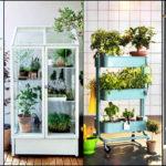 """10 วิธี """"จัดสวนแบบไม่ต้องมีสวน"""" ไอเดียเพิ่มพื้นที่สีเขียวสำหรับบ้านพื้นที่น้อย"""
