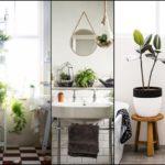 """แนะนำ 5 วิธี """"จัดสวนในห้องน้ำ"""" เพิ่มบรรยากาศสีเขียวสดชื่น ให้กับช่วงเวลาอาบน้ำ"""