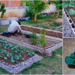"DIY ""ทำแปลงผักจากอิฐบล็อก"" ทำง่าย สวยงาม เป็นระเบียบ ด้วยงบประมาณ 1,164 บาท"